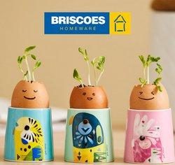 Briscoes catalogue ( 6 days left )