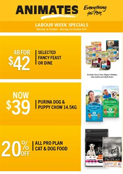 Offers from Animates in the Auckland special
