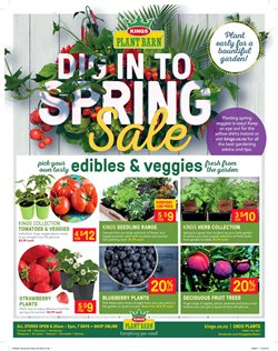 Offers from Kings Plant Barn in the Auckland special