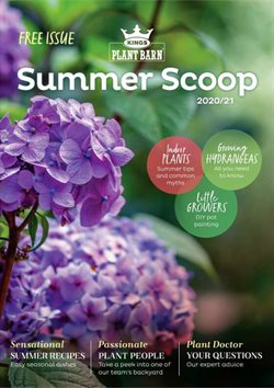 Hardware & Garden offers in the Kings Plant Barn catalogue in Hamilton ( More than a month )
