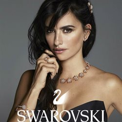 Offers from Swarovski in the Auckland special