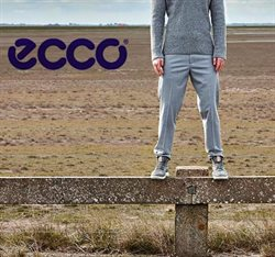 Offers from Ecco Shoes in the Auckland special