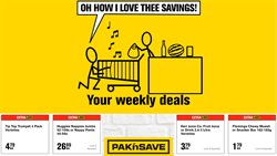 Pak n Save catalogue ( 2 days ago )