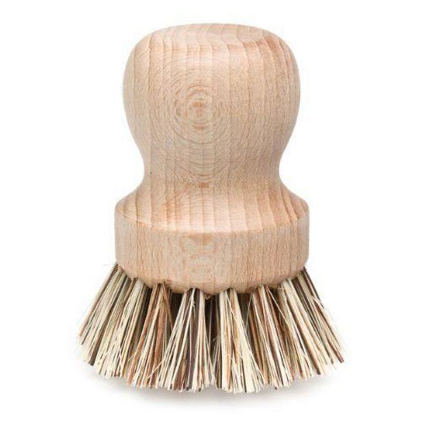Sprig Kitchen Scrubbing Brush 7x6cm offer at $12.99
